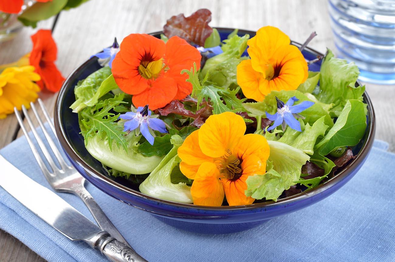 Narsurtium salad